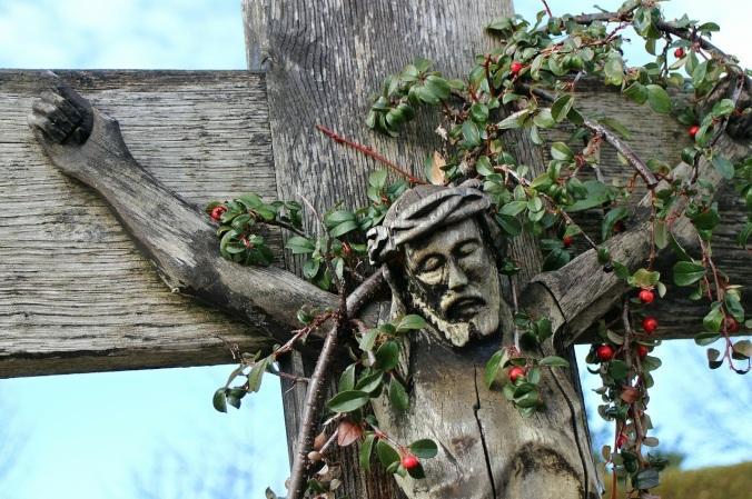 Crucifix Vine