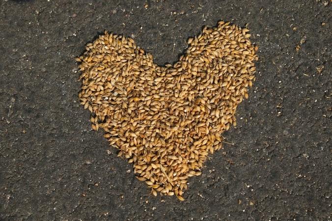 Heart Grain